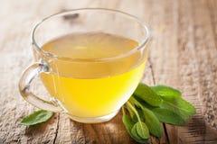与绿色叶子的草本贤哲茶在玻璃杯子 免版税库存图片