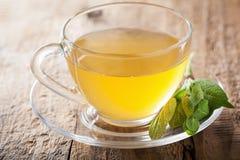 与绿色叶子的草本贤哲茶在玻璃杯子 免版税库存照片
