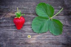 与绿色叶子的草莓在一个织地不很细委员会 库存图片
