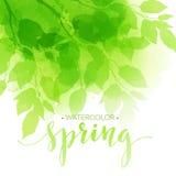 与绿色叶子的水彩背景 向量 图库摄影