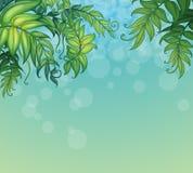 与绿色叶茂盛植物的蓝色背景 库存例证