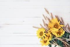 与黄色向日葵和麦子耳朵花束的背景  库存图片