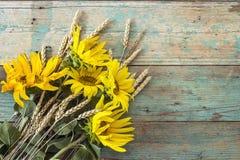 与黄色向日葵和麦子耳朵花束的背景  免版税图库摄影