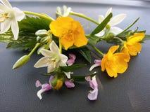 与黄色和橙色花的明亮的春天背景 库存照片