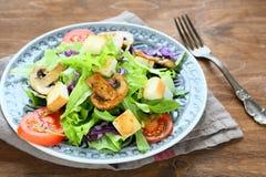 与绿色和蘑菇的开胃沙拉 库存图片