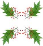 与绿色圣诞节霍莉的背景离开和莓果 水彩手拉的样式 库存照片