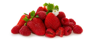 与绿色在白色背景隔绝的叶子和花的草莓 免版税库存图片