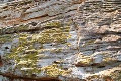 与绿色地衣的岩石 库存照片