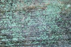与绿色地衣的黑暗的岩石 免版税图库摄影