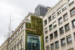 与绿色墙壁的大厦 库存照片