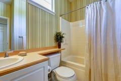 与绿色墙纸的简单的卫生间内部 库存图片