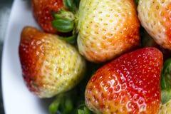 与绿色尾巴的未成熟的红色草莓 库存图片