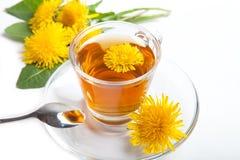 与黄色开花的蒲公英清凉茶在白色背景的茶杯 图库摄影