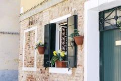 与绿色快门和罐的美丽如画的窗口开花 库存图片