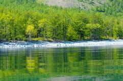 与绿色春天森林的贝加尔湖风景 免版税库存照片