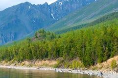 与绿色春天森林的贝加尔湖风景 库存照片