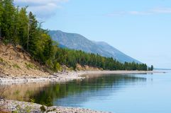 与绿色春天森林的贝加尔湖风景 免版税库存图片