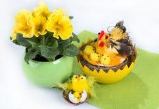 与黄色春天的复活节装饰开花,在绿色餐巾的小鸡在轻的背景 库存照片