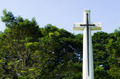 与绿色树的十字架在背景中 库存图片