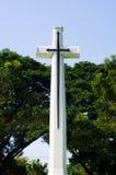 与绿色树的十字架 库存照片