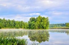 与绿色树的小岛在湖 免版税库存图片