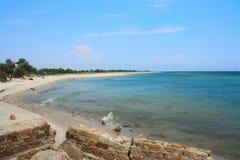 与绿色树的晴朗的沙滩 免版税库存图片