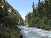 与绿色森林和山的河风景 图库摄影