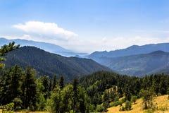 与绿色森林横向的山 免版税库存图片