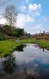 与绿色森林的河风景 免版税库存照片