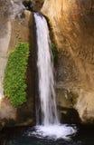 与绿色植物的垂直的瀑布在边 库存照片