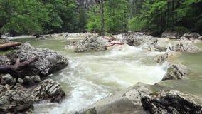 与绿色植被的山小河 照相机提高 股票录像