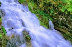 与绿色植被的瀑布 免版税库存图片