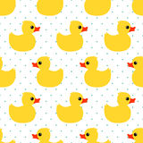 与黄色橡胶鸭子的逗人喜爱的无缝的样式在圆点背景 免版税图库摄影