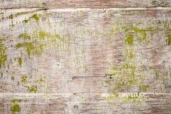 与绿色油漆,背景纹理的老脏的胶合板 库存图片