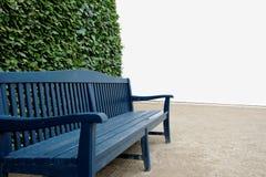 与绿色灌木的蓝色长木凳和白色墙壁在背景中 免版税图库摄影