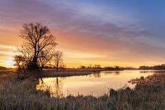 与黄色灼烧的云彩的日出在树包围的一个狂放的池塘在秋天早晨 免版税库存图片
