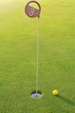 与黄色球的高尔夫球孔 库存照片