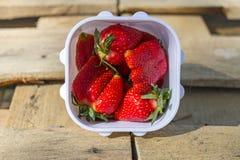 与绿色的甜水多的成熟巨大的红色草莓莓果在白色塑胶容器离开在木背景 库存照片
