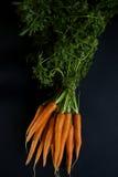 与绿色的红萝卜 库存照片