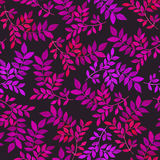 与紫色的花卉无缝的样式在黑暗的背景离开 库存照片