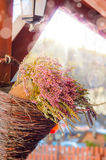 与紫色石南花的花构成 免版税库存照片