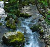 与绿色石头的狂放的小河 库存图片