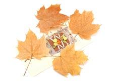 与黄色秋叶的卡片在白色背景 免版税库存照片