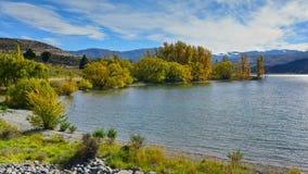 与黄色秋叶的树在湖Aviemore在坎特伯雷 免版税库存图片