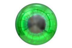 与绿色色的虹膜的眼睛 免版税库存图片