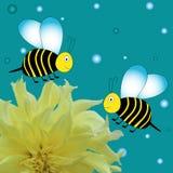 与黄色花的动画片蜂 免版税图库摄影