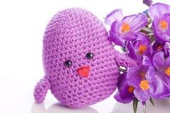 与紫色花的小鸡 免版税库存照片