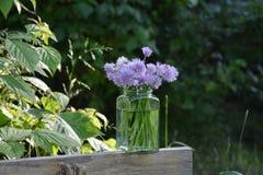 与紫色花的花束香葱在木头的清楚的玻璃 图库摄影