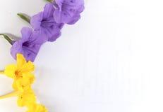 与黄色花的紫色花 免版税图库摄影