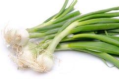 与绿色茎的白洋葱 免版税库存照片